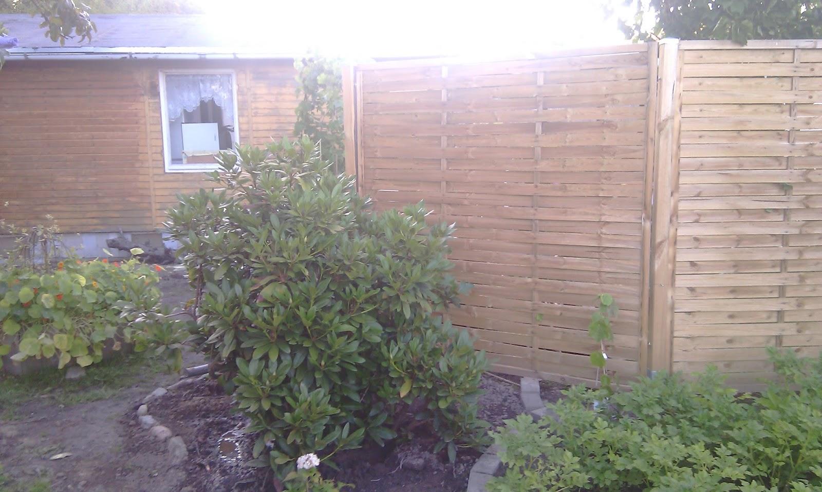 rhododendron umsetzen umpflanzen gartenbuddler. Black Bedroom Furniture Sets. Home Design Ideas